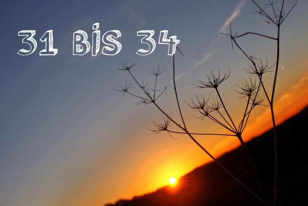34 Fakten Zum 34 Geburtstag Fee Ist Mein Name