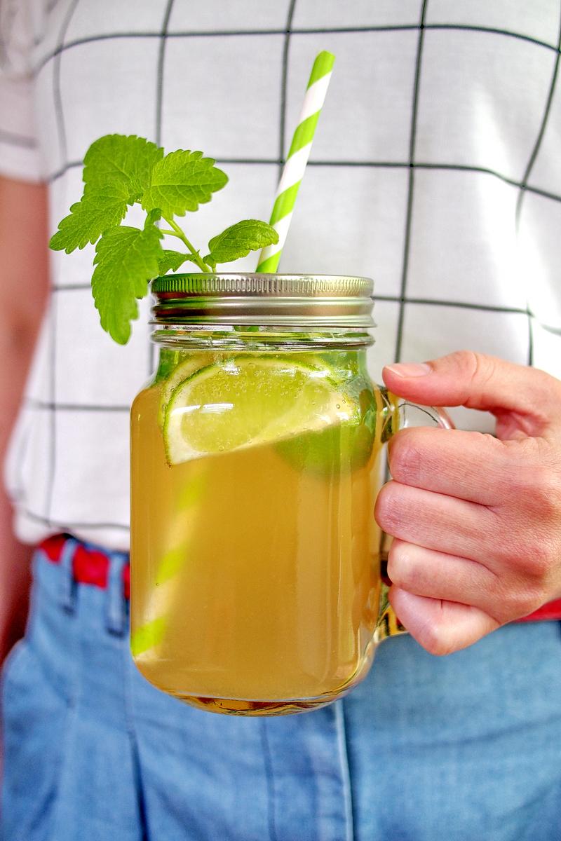 Limonaden und Sirups - Die besten Blogger-Rezepte  - cover